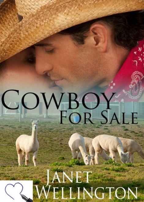 cowboy for sale