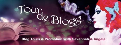 tour de blogg