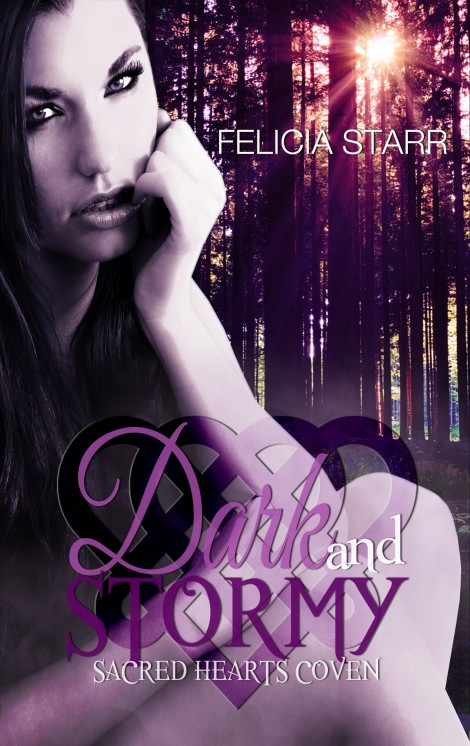 Dark And Stormy Front Cover