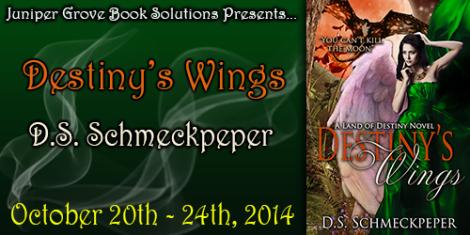 Destinys-Wings-Banner