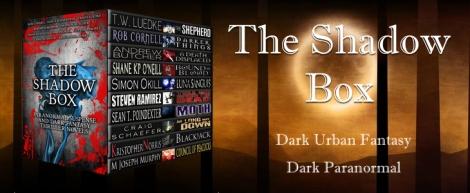 Shadow Box Banner 1