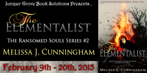 The Elementalist Tour Banner